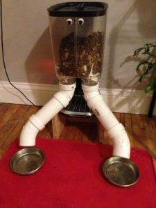 power cat feeder raspberry pi